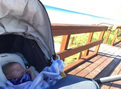 Valco Baby Snap Ultra Pram Review – Lindsay Abbott